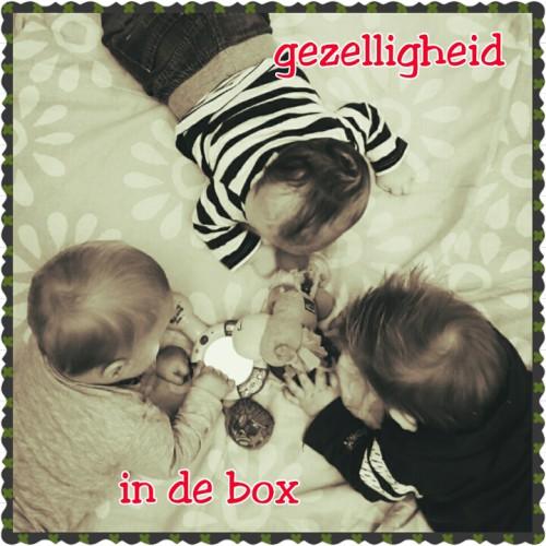PhotoGrid_1444908894131 Kinderdagverblijf Villa Kakelbont Venlo