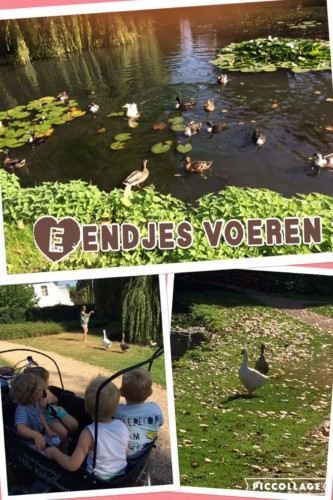 img-20160914-wa0003 Kinderdagverblijf Villa Kakelbont Venlo