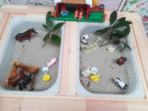 IMG-20171003-WA0013 Kinderdagverblijf Villa Kakelbont Venlo