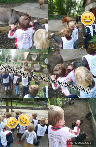IMG-20171004-WA0001 Kinderdagverblijf Villa Kakelbont Venlo